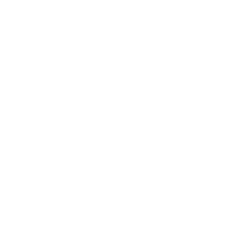 Wicked Fire logo